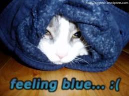 """""""plavo i tužno na engleskom je blue"""""""