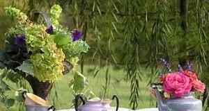 čaj u bašti