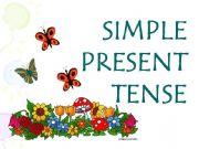 """Present Simple Tense, kako se gradi i upotrebljava"""