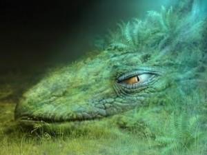 Legenda o Noći Veštica  Drag%C3%A3o-verde-300x225