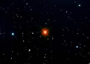 """""""zvezda iz sazvežđa Zeca, Hinds Crimson Star"""""""