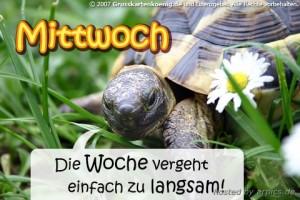 """sreda na nemačkom - mittwoch"""