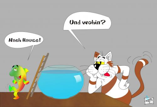 """""""wohin, upotreba u nemackom jeziku"""""""