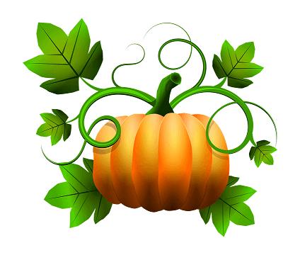 šta znači pumpkin