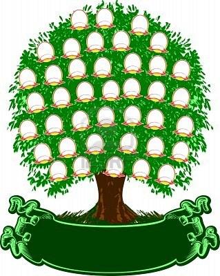 Как можно оформить фамильное (семейное) дерево своими 12