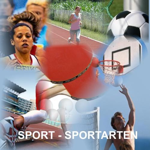 """""""sport i vrste sportova na nemačkom"""""""