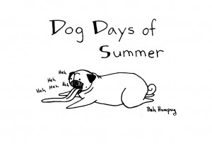 """pseća vrelina - Dog Days of Summer"""