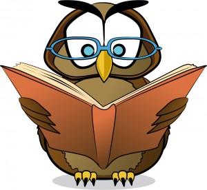 Svi jezici sveta Owl-300x276