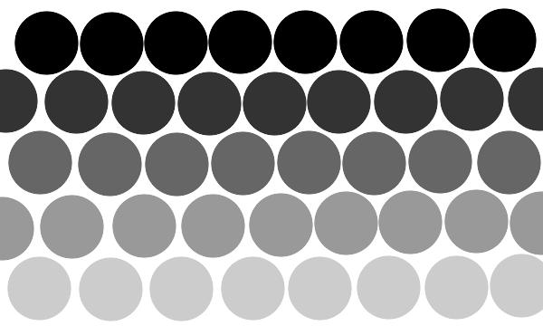 siva boja