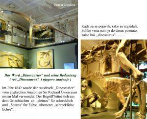 dinosaurus na nemackom